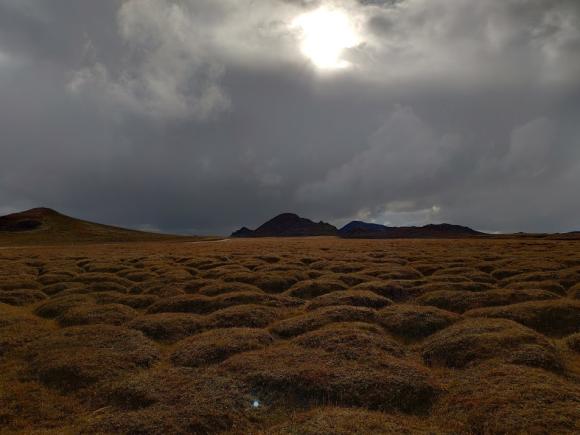 lava field iceland